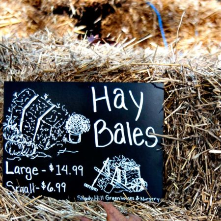 Cohas Unframed Chalkboard Sets in many different sizes great for DIY Weddings, and Various Uses